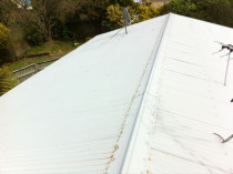 Before - old roof