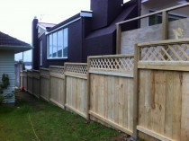 Daves Fences - 1.8M capped fence with trellises.