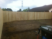 Daves Fences - 1.8M dog head palings.