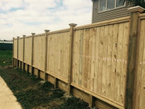 Daves Fences - Shiplap 1.8M capped & post capped(machine gauge)
