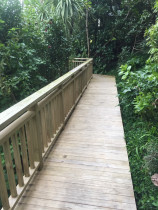 A deck leading off into the bush