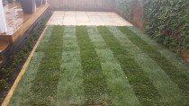 Ready lawn with tiled patio