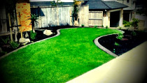 Turf lawn with coloured concrete edging.