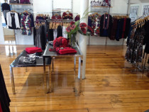 Jean Jones Store in Ponsonby by Endless Flooring - We recently did the floors at the newly renovated Jean Jones store in Ponsonby,