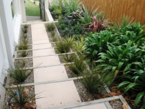 Paver steps and planting