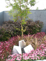 Auckland Flower Show Silver Award - The Pink Galaxy Garden