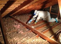 Insulation Removal by GP Insulation