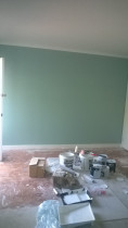 Interior Painting - Feature Wall