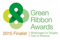 Green Ribbon Award Finalist 2015