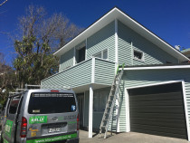 island Bay Wellington - Sunny spot . house was in a bad way but came up very nice one more happy client