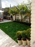 Formal layout/ Remuera Garden by Kirsten Sach Landscape Design