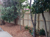 Fence and Garden work - Pre sale Make over, Fence create privacy