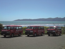 Some of our vans - You will always know it's us!  Look for the RED vans with the BLUE bubbles!