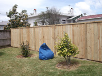 Mohi Te Whatu Fencing Limited - 1.8m rough sawn with capping