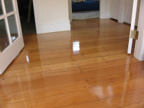 Kauri gloss - Finish gloss moisture cured polyurethane