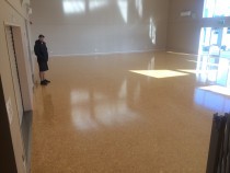 Particle Board Floor - Moisture cured gloss polyurethane finish