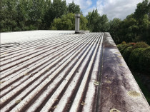 NZTS Long Run Roof Clean - Before