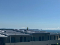 NZTS Commercial Roof Cleaning