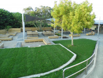 Rangitoto College by Quality Build Ltd - We often take on some Ministry of Education work. Here is a finished shot of the landscape project we undertook at Rangitoto College.