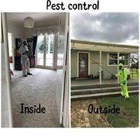 Pest Control... Inside and Out