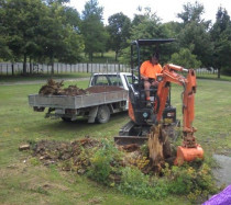 Stump Removal - Stump Removal