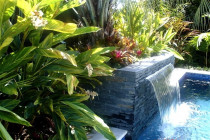 pool and water feature by The Landscape Company