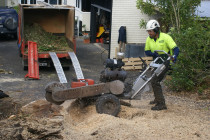 Treespecs - Stump grinding - We have both tracked stump grinders for the bigger jobs and wheel grinders for the more hard to get to stumps