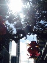 Chinese Lantern Festival - We also have the pleasure of hanging the lanterns for the Chinese Lantern festival held in Auckland City. We have just completed our 7th year.