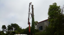 Hiab removal - A job requiring skill and machinery, keeping the house below the large tree safe.