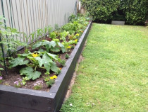 We build Vege Gardens of any shape and size at Underground Gardening