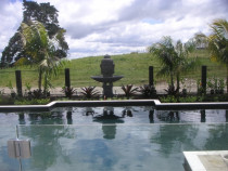 Gracehills by Virtuoso Landscape Design Limited - A large lifesyle property; pool with tropical planting and buddha water feature