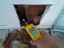 Extreme moisture damage to wall framing  inspected by Weathertight Home Inspections - Note that there is very littel staining or damage to Gib wall linings or skirtings even with such extreme decay to the timber.