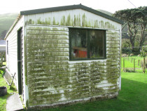 Really grubby shed - Needs a treatment from Wellington Property Wash Ltd