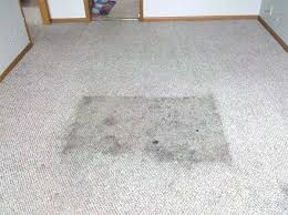 Auckland Steam N Dry Carpet Cleaning Services Auckland