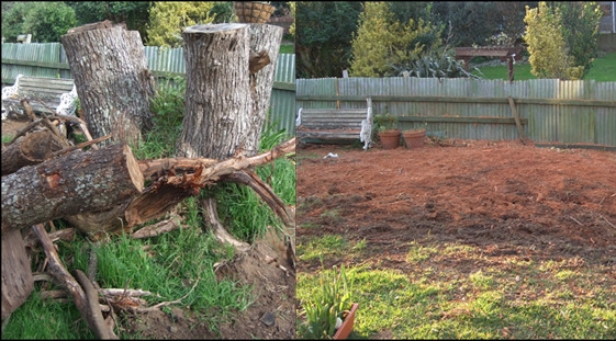Dingo groundworx limited landscaping services albany for Auckland landscaping services ltd