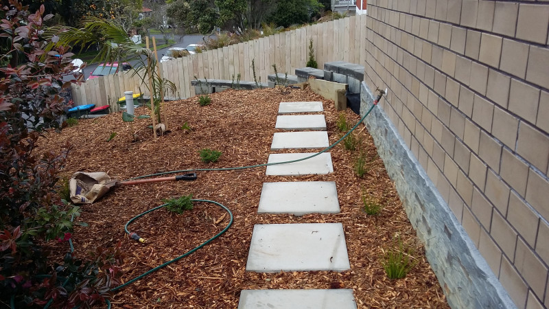 Sanctuary landscapes treecare landscaping services st for Auckland landscaping companies