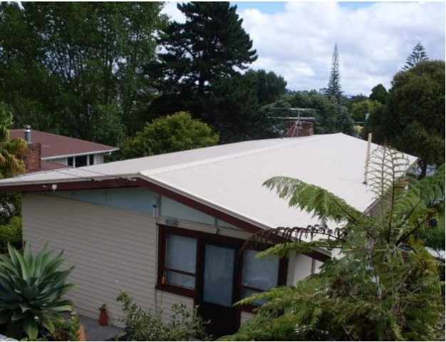 Shamrock Reroofing Limited Roofing Mt Albert Nocowboys
