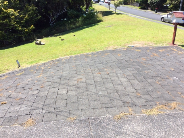 Landscaping nocowboys for Landscaping jobs auckland
