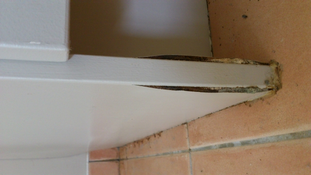 Urgent Job Fix Mould Water Damage Kitchen Cabinet Nocowboys